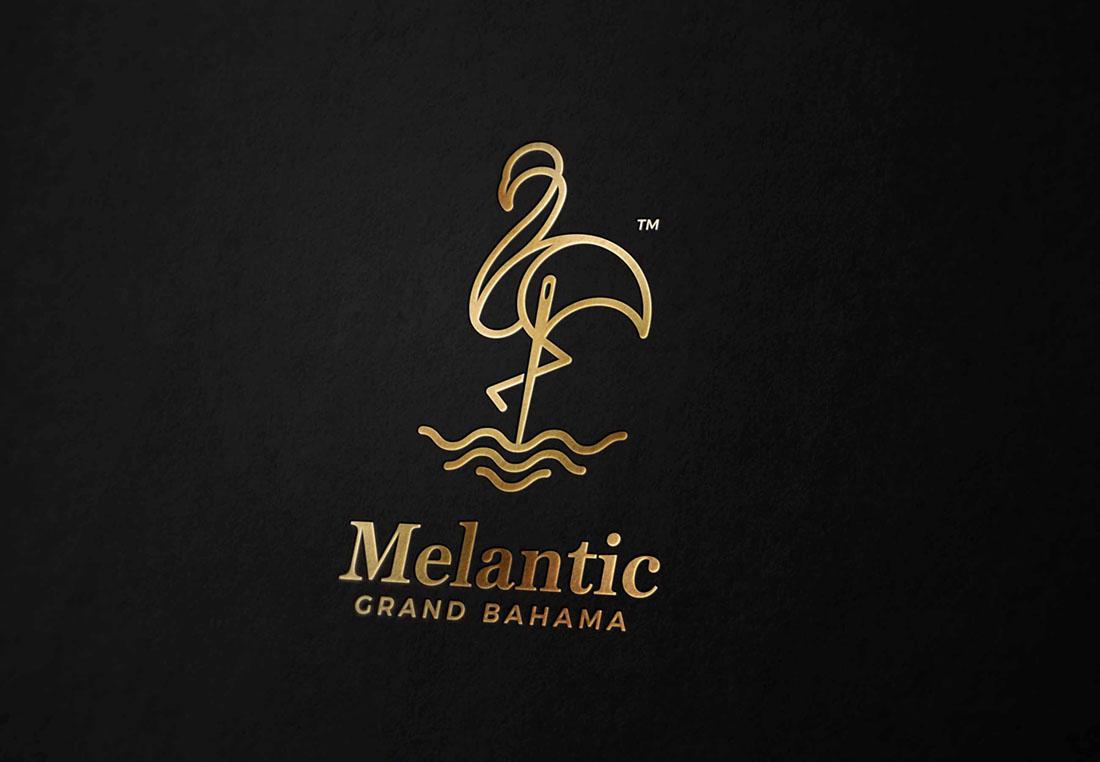clothing brand portfolio